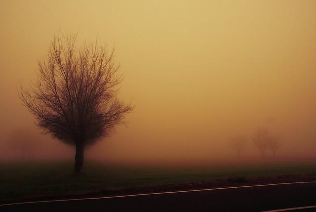 {EXPLORE} Burning fog
