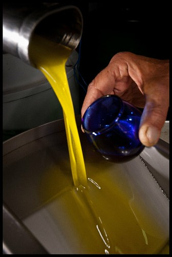 Olive Oil at the olive mill-002 | by Flavio~
