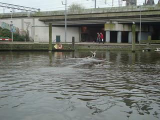 Amsterdam 2011 | by natanvd