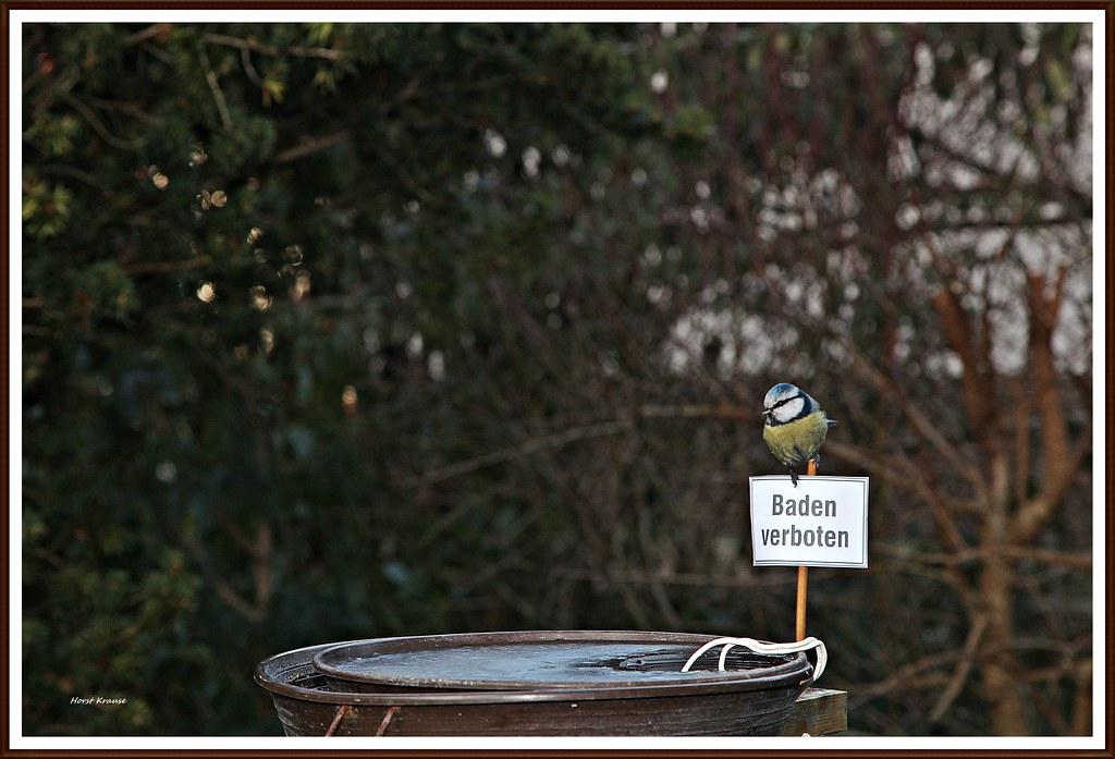 Img4576x Minus 10 Gradbadeverbot In Der Elektrisch Behe Flickr