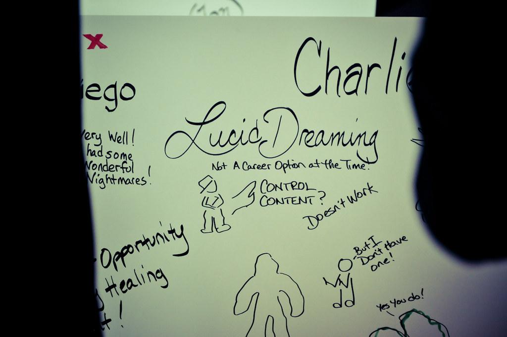 TEDxSanDiego 2011 graphic artist Jeannel King's work.