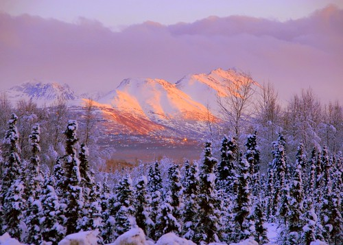 alaska anchorage artdigital fleursetpaysages outstandingromanianphotographers