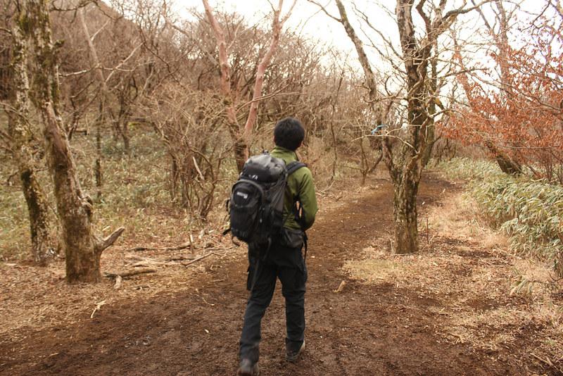 箱根駒ヶ岳へ