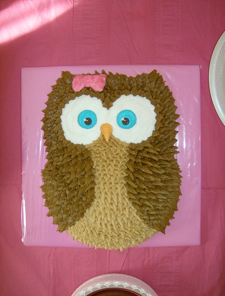 Wondrous Buttercream Owl Birthday Cake Ohairas Flickr Funny Birthday Cards Online Elaedamsfinfo