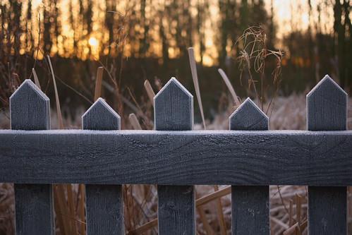 sunrise fence frost cheshire bokeh middlewich trentandmerseycanal hff panasonicdmcgf2 lumixhh020e20mm