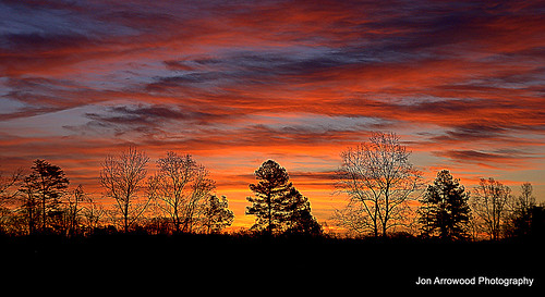 trees winter color silhouette sunrise landscape nc colorful sony 200 alpha jja lincolnphotographyclub dpsdawn
