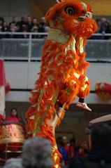 Chinees nieuwjaar in Den Haag
