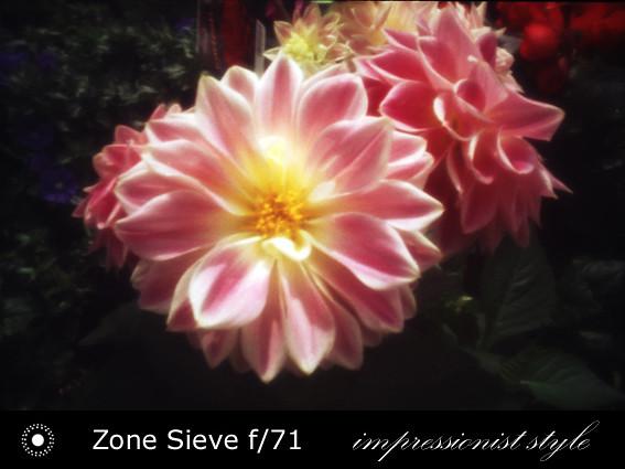 zs24-f71-01