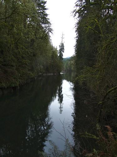 christmas camping river washington stateparks ikekinswastatepark