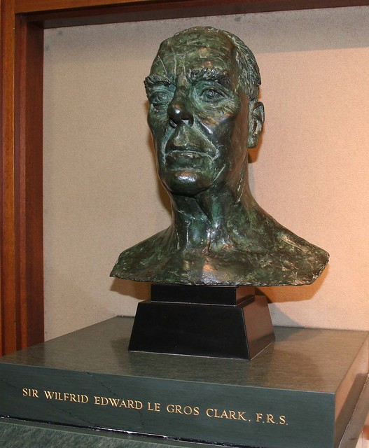 Bust of Sir Wilfrid Le Gros Clark in the Le Gros Clark Building, University of Oxford