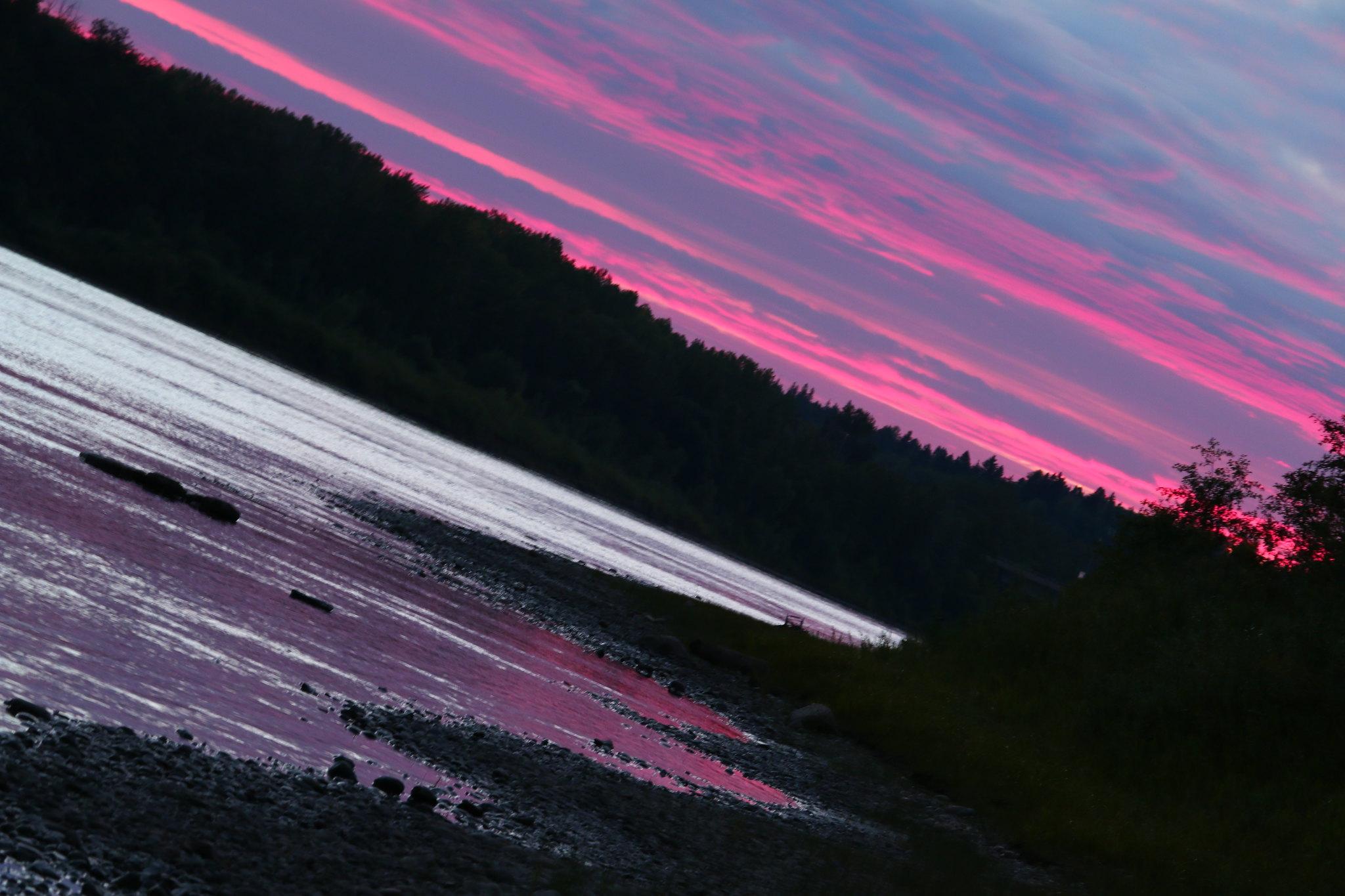 Pink Ribbons (SOTC 168/365)