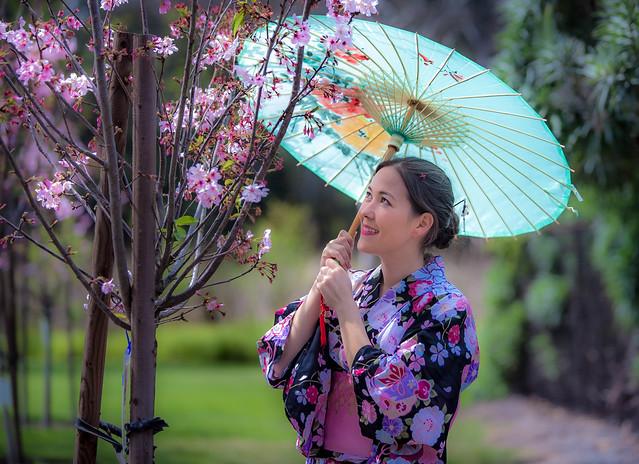 Sakura & Kimono @ Japanese Cultural Festival in Huntington Beach, CA