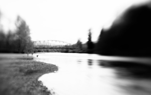 blackandwhite monochrome landscape river nature water pacificnorthwest canon people dog blur dreamy lensbabymuse canoneos5dmarkiii washington johnwestrock