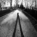 shadow by Bearseye