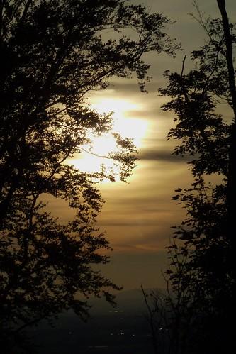 trees sunset castle germany deutschland sonnenuntergang view silhouettes frankenstein bäume blick darmstadt burg rheinebene ivlys