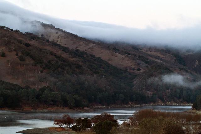 Del Valle Fog
