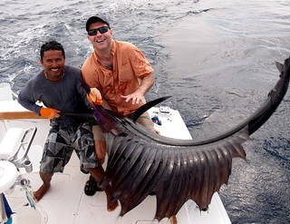 Sailfish | by thart2009