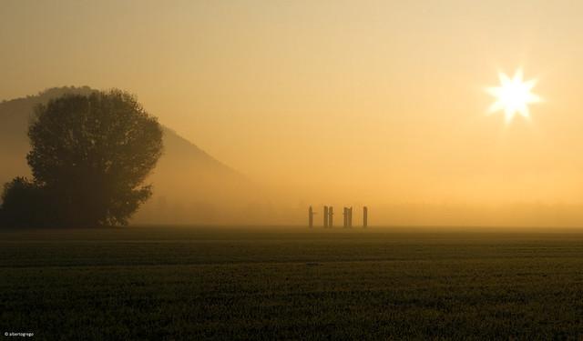 The foggy dawn