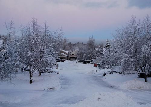 snow alaska day anchorage natureplus fleursetpaysages outstandingromanianphotographers