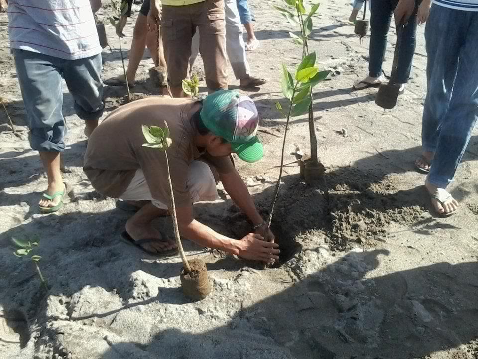 Mangrove Tree Planting, Zambales, Philippines