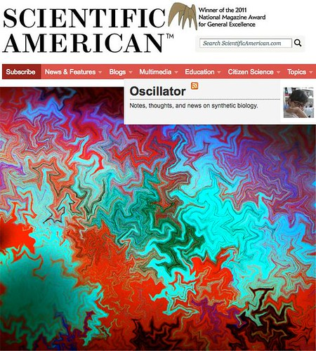 Our bacterial patterns in a Scientific American blog (Oscillator blog, from Christina Agapakis) | by Fernan Federici