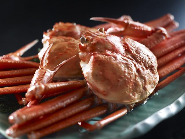 Kasumi Red Snow Crab
