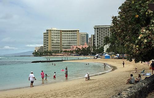 Honolulu -Joe 5 | by KathyCat102