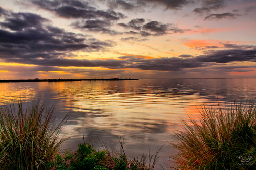 morning wild cloud sun color reflection nature water beautiful clouds sunrise florida wildlife merrittisland nwr merrittislandnwr scotthelfrich scotthelfrichphotographycom