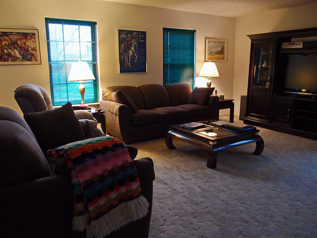 the living room - the living rooms