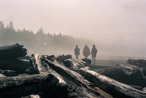 Chesterman  Beach, Vancouver Island