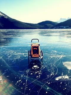 Levi on ice | by intransit