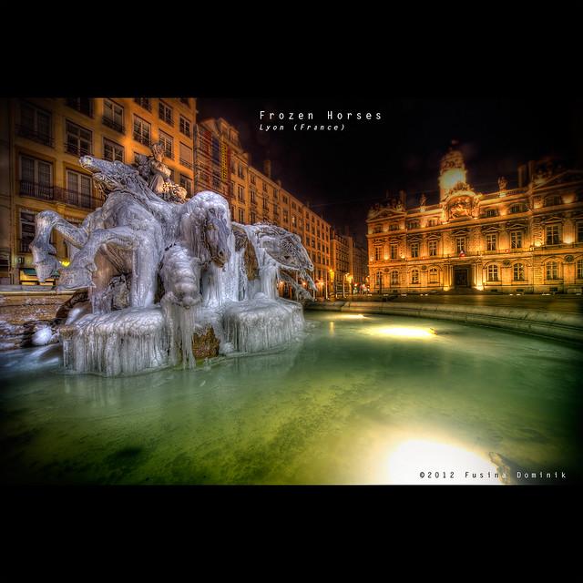 Frozen horses   Lyon (France) {explored}