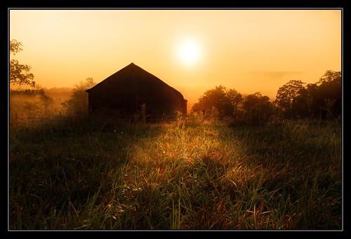 county trees light sun mountains grass fog barn sunrise shadows farm rays morgan