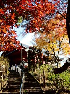 寛永寺 清水観音堂 -Kaneiji Kiyomizu Kannondo-