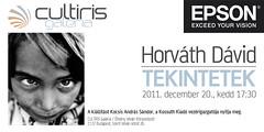 2011. december 16. 13:25 - Horváth Dávid: Tekintetek