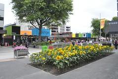 Centre comercial a base de containers
