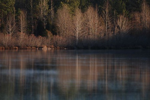 winter mist lake reflection georgia pikecounty