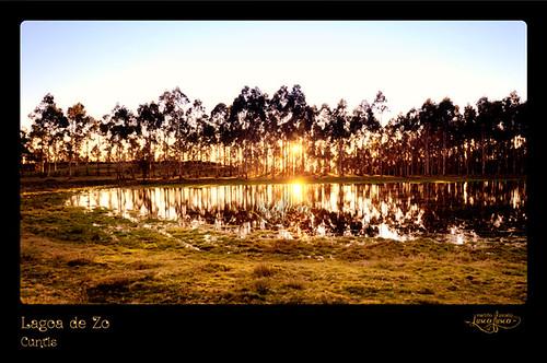 zoo galiza lagoa monte zo lagoas postadesol eucalipto auga reforestacion poza solpor luscofusco arbores sendeirismo cuntis martiñopicallo