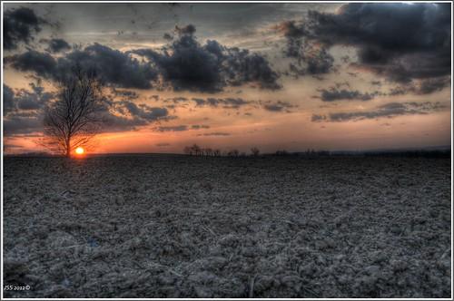 sunset farming robesoniapa d5100