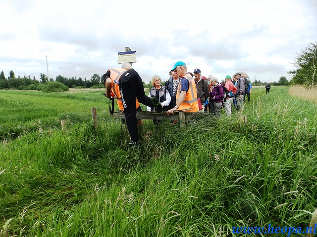 2016-05-25        s'Graveland       25 Km (79)