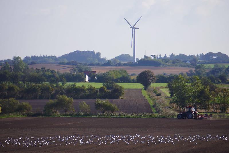Groeft-landskab-september-2014