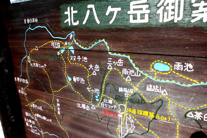 八ヶ岳_23