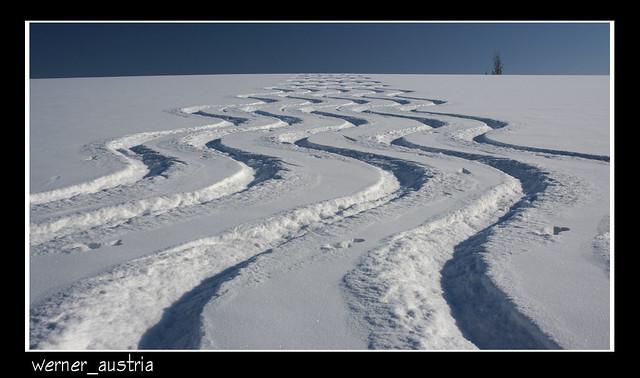 02-12 Spuren im Schnee_06955