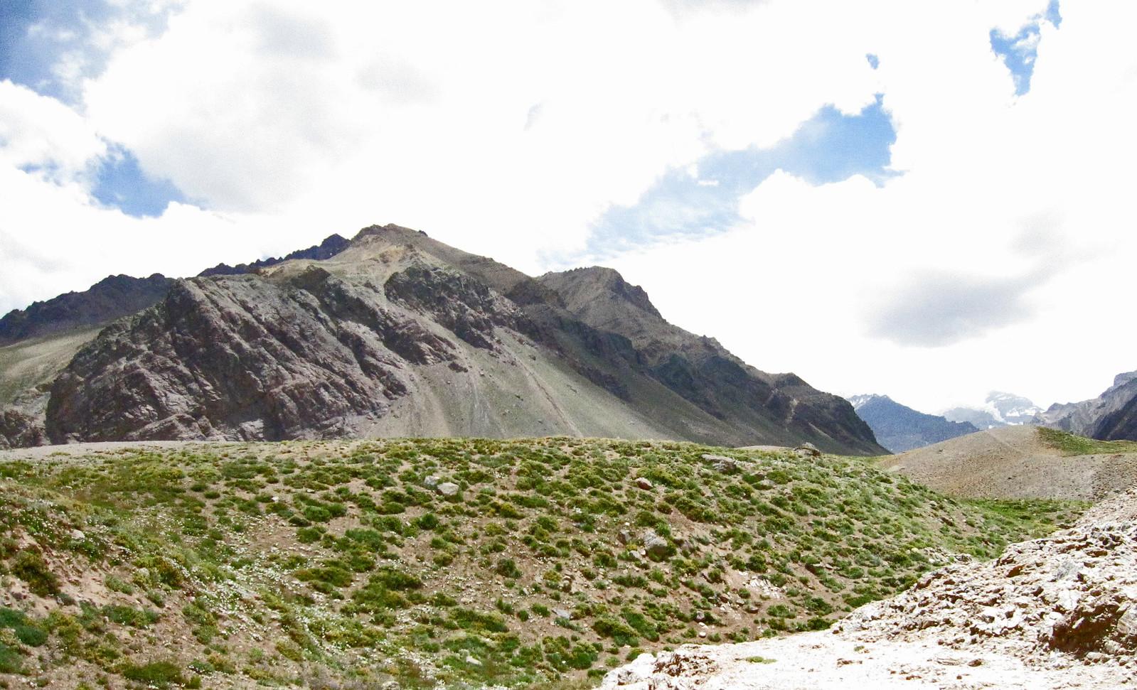 Mendoza 382