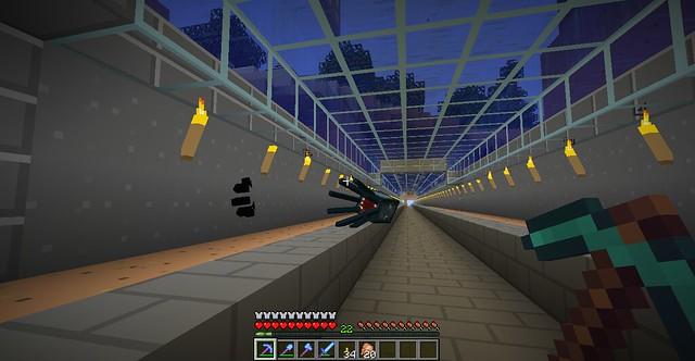 Tunnel squids