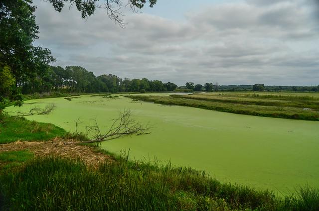 Nygren Wetlands 14