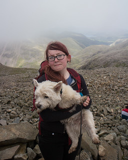 Highest dog in England for a 3rd time! | by johnkaysleftleg