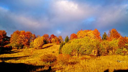 autumn fall slovakia donovaly