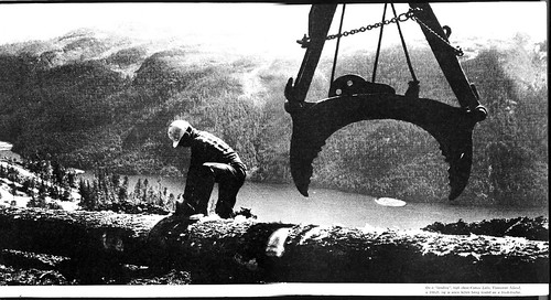 Logging and Sawmills
