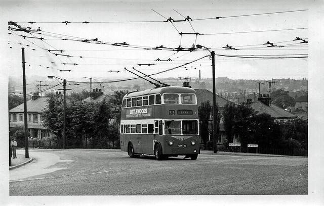 omnibuses 3241